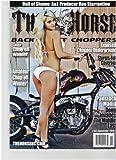 The Horse Backstreet Choppers Magazine (Exposed chopper underground, November 2010)