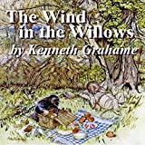 Bargain Audio Book - The Wind in the Willows