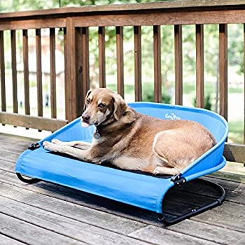 Amazon.com : Waterproof Outdoor Dog Bed Cot with Elevated