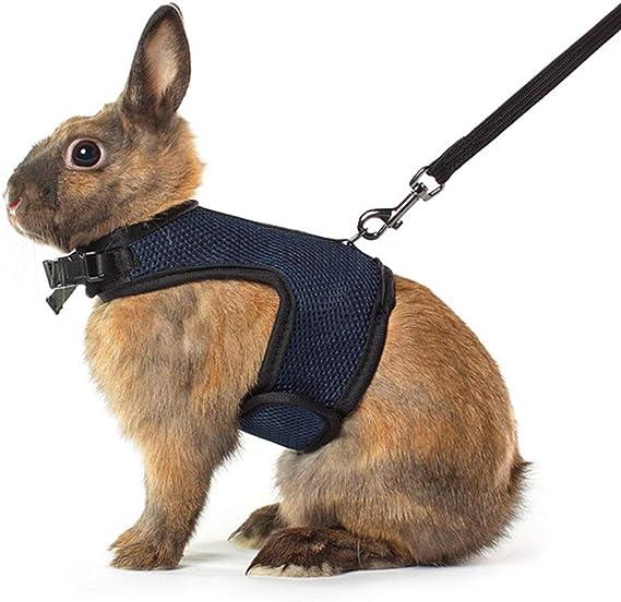 Qchengsan Arnés Suave con Correa para Conejos, Conejo elástico ...