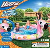 Banzai Pools - Best Reviews Guide