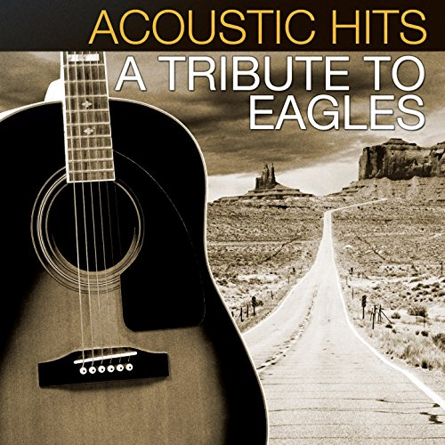 Acoustic Hits: A Tribute to Th...