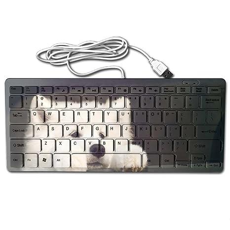 Lonely perro take me home impreso portátil teclados Mini 78 teclas teclado flexible para portátil