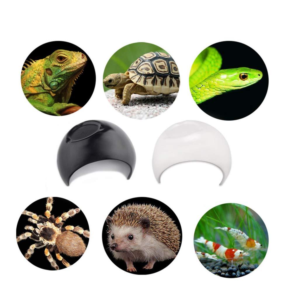 Balacoo - Tabla de Cortar de plástico para Mascotas, diseño de ...