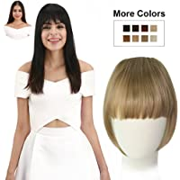 REECHO Fashion One Piece Clip in Hair Bangs / Fringe / Hair Extensions Color: Blonde colors #27 & #613 Mixed
