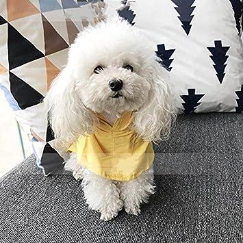 YQYQYQ Animal Impermeable Ropa De Perro Al Aire Libre ...