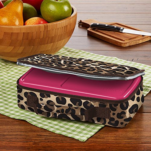 fit fresh bento box lunch kit with reusable bpa free removable plastic containers zipper. Black Bedroom Furniture Sets. Home Design Ideas