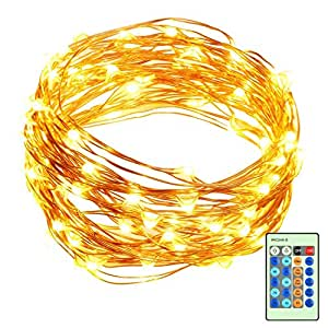 33ft LED String Lights Dimmable with Remote Control, ALPULON Waterproof Lights for Christmas Decorations,Parties,Bedroom,Patio,Garden,Gate,Yard,Outdoor(Copper Wire Lights, Warm White)