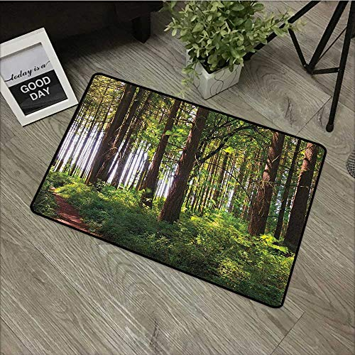 Pool anti-slip door mat W24 x L35 INCH Forest,Pathway in a Shady Forest of Bushes and Thick Trunks Grass Unique Wild Life Scenery, Green Brown Our bottom is non-slip and will not let the baby slip,Doo