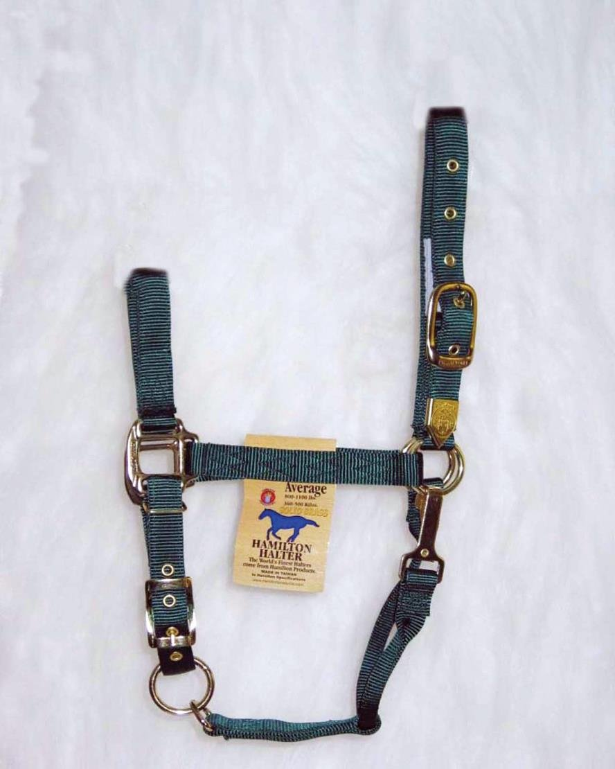 ADJUSTABLE CHIN HORSE HALTER WITH SNAP - AVERAGE - Hunter Green