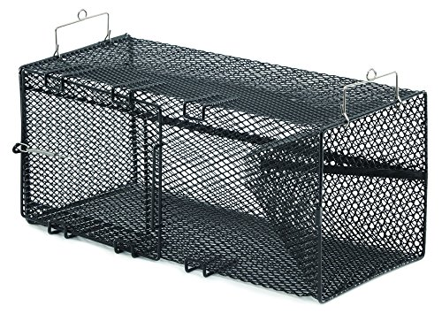 Frabill Crawfish Trap, 8 x 8 x 18-Inch, Black by Frabill