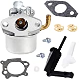 QAZAKY Carburetor for Briggs Stratton 798653 791077 696981 698860 790182 694508 795069 698859 790180 790290 693865