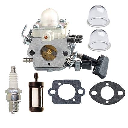HIPA - Carburador con bomba de arranque y filtro de aire ...