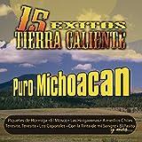 15 Exitos En Tierra Caliente: Puro Michoacan by Huaches De Michoacan Y Los Michoacan De Camerino M (2007-10-30)