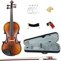Esound 1/8 MP0013 Tiger Stripes Solid Wood Student Violin with Hard Case, Shoulder Rest, Bow, Rosin and Extra Strings