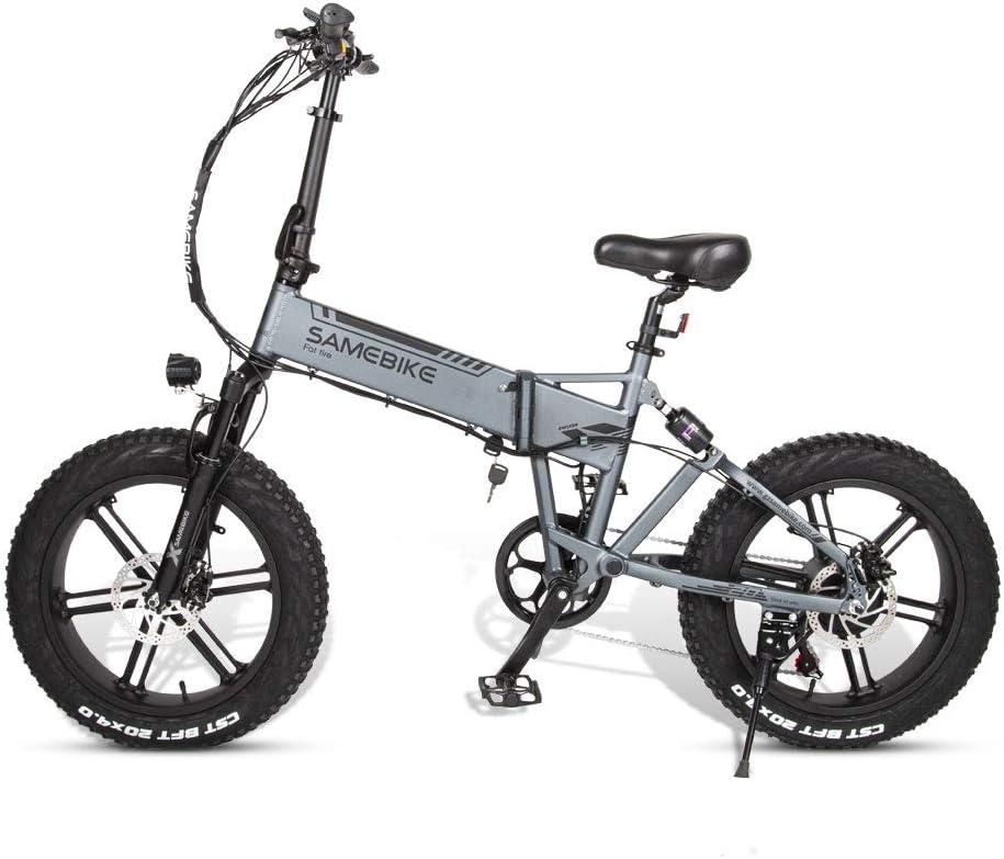 Bicicleta eléctrica para Adultos y Adolescentes Plegable E-Bici 48V 500W 10AH 20 x 4,0 Pulgadas Fat Tire 7 velocidades con 14 Pulgadas de Pantalla LCD de neumáticos,Plata: Amazon.es: Deportes y aire libre