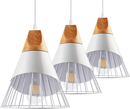 B2ocled Pendant Lighting Kit,Swag Pendant Lights for Dinning Room, Living Room, Bedroom and Home Decoration, Include 8W Edison Bulb and 9.4 Pendant Light Shade with Iron Cage 3 Kits