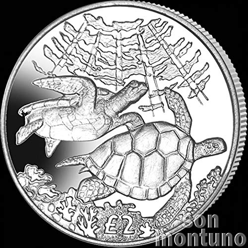 GREEN SEA TURTLE - 2017 British Indian Ocean Territory £2 Uncirculated Cupro Nickel Coin - Limited Mintage of Only 10,000 ()
