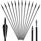 Huntingdoor 12Pcs 31inch Archery Carbon Arrows Spine 550 Hunting Targeting Arrows with Replaceable Broadhead Nock Rotatable for Recurve Bow Compound Bow Target Practice Outdoor Gift