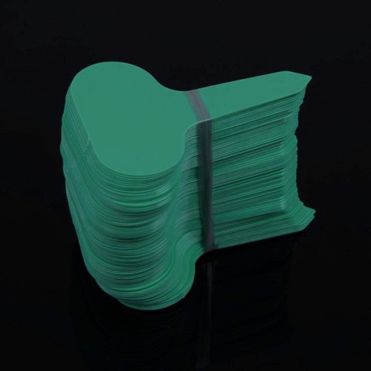Ba30DEllylelly 100 pi/èces en plastique de type T /étiquettes de jardin ornements plante fleur /étiquette p/épini/ère /épaisse /étiquette marqueurs pour plantes d/écoration de jardin