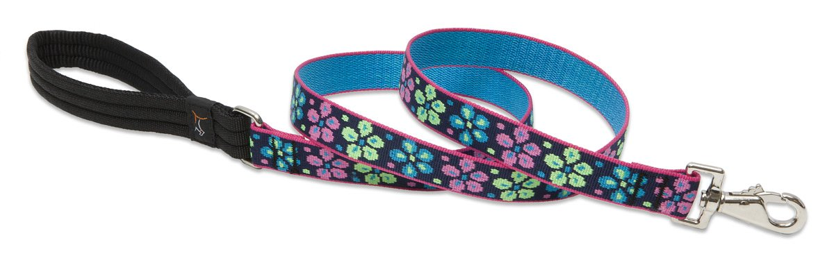 LupinePet Originals 1'' Flower Power 6-foot Padded Handle Leash for Medium and Larger Dogs