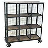 Crestview Collection Industria Metal and Wood Bookcase