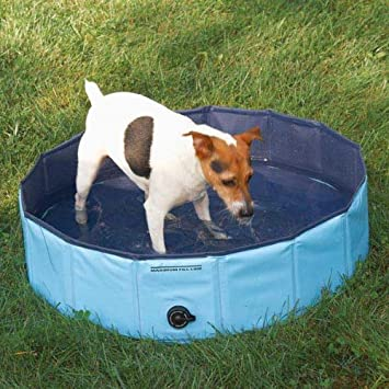 Dog Paddling Pool To Keep Them Cool In Hot Summer Days Small Measures 31 5 Diameter X 7 87 High Amazon Co Uk Pet Supplies