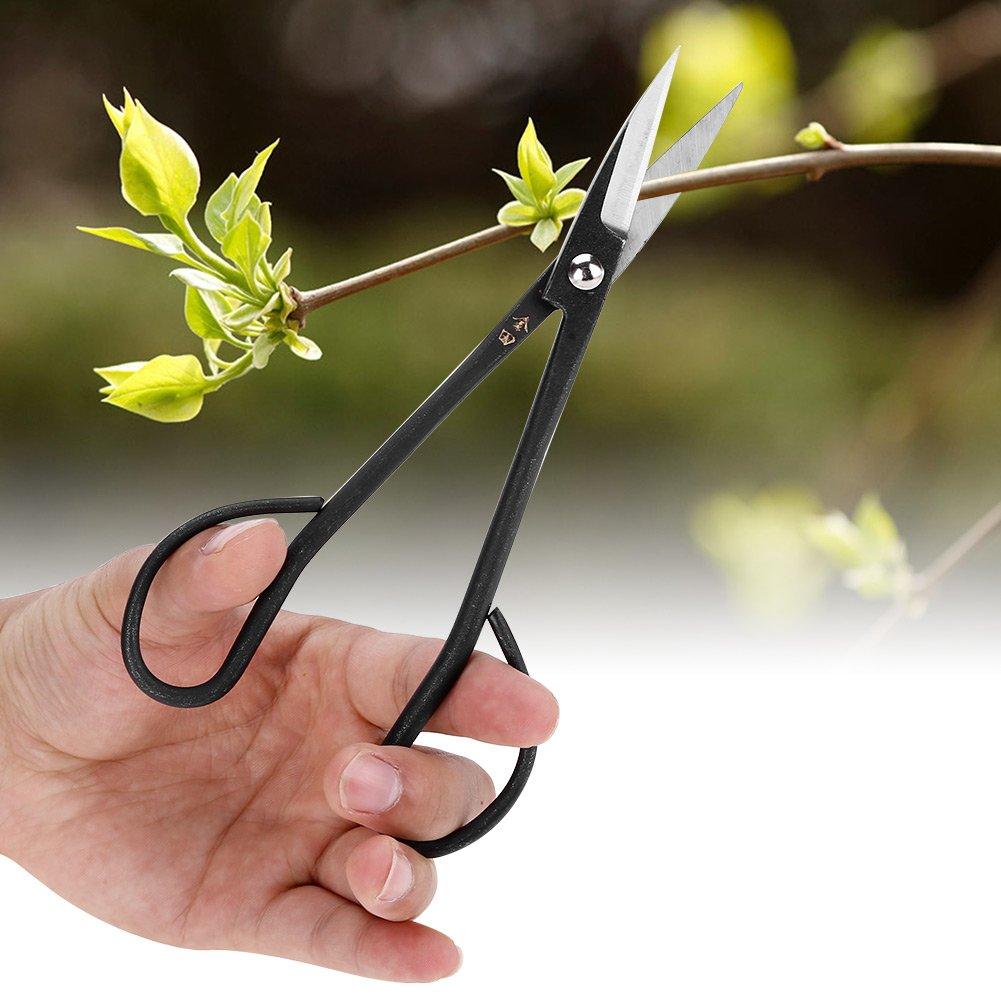 tijeras podar bonsái