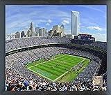 """Bank of America Stadium Carolina Panthers Photo (Size: 17"""" x 21"""") Framed"""