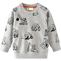 MOLYHUA Sudadera para niños con diseño de dinosaurio, de manga larga, informal, de algodón, para 2 a 8 años