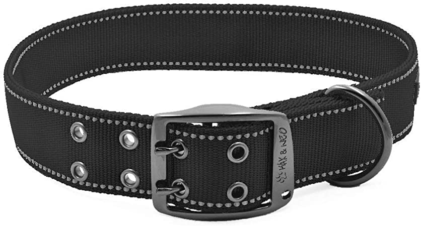 Max and Neo MAX Reflective Metal Buckle Dog Collar | Amazon
