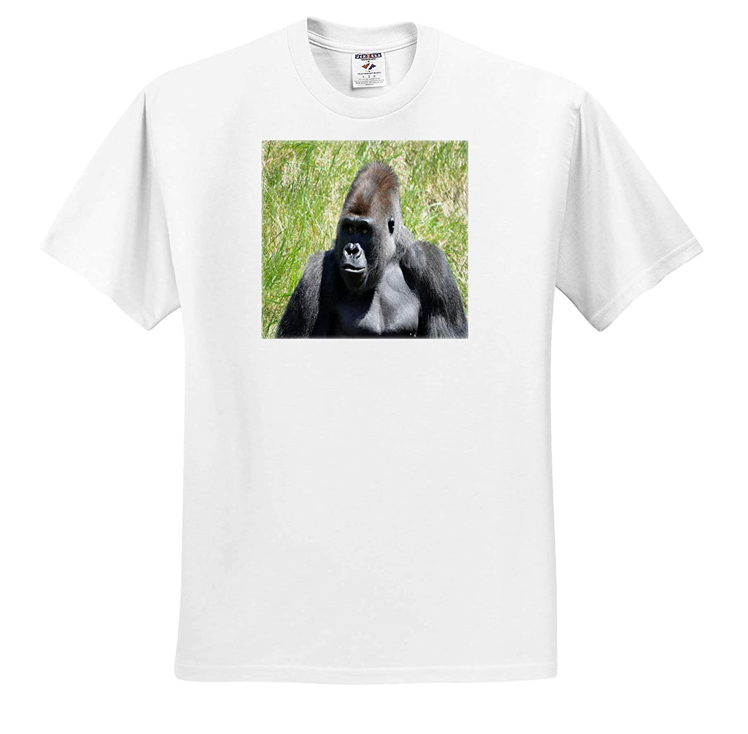 3dRose Dreamscapes by Leslie Adult T-Shirt XL Animals Silverback Gorilla Chip ts/_314298