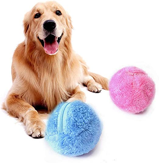 Greetuny 5pcs Bola mágica Perro Mascota interactiva Juguete ...