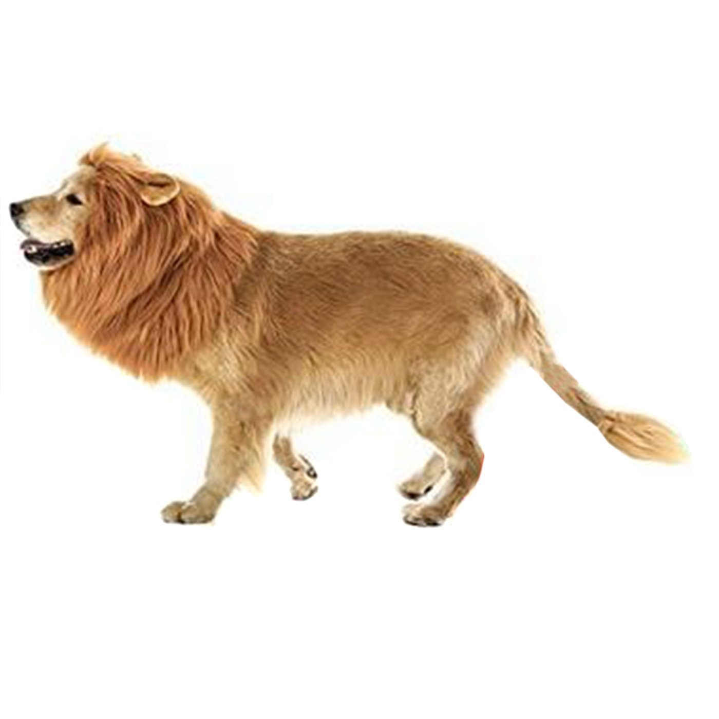 Alfie Pet by Petoga Couture - Jameson Lion Mane Wig and Tail Costume for Dogs and Cats - Size: Large