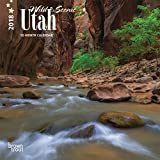 Utah, Wild & Scenic 2018 7 x 7 Inch Monthly Mini Wall Calendar, USA United States of America Rocky Mountain State Nature