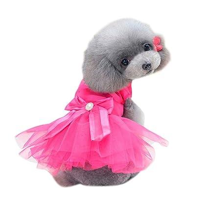 SunGren Vestido de perro pequeño, vestido de burbuja de perro de mascota de moda Gato de perro falda de verano linda para perros pequeños(L,Rosa ...