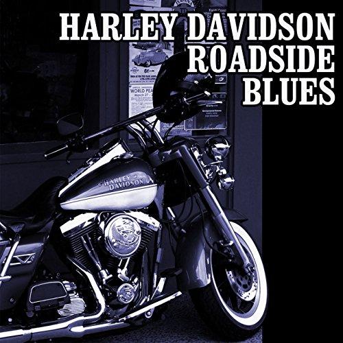 Harley Davidson Roadside Blues