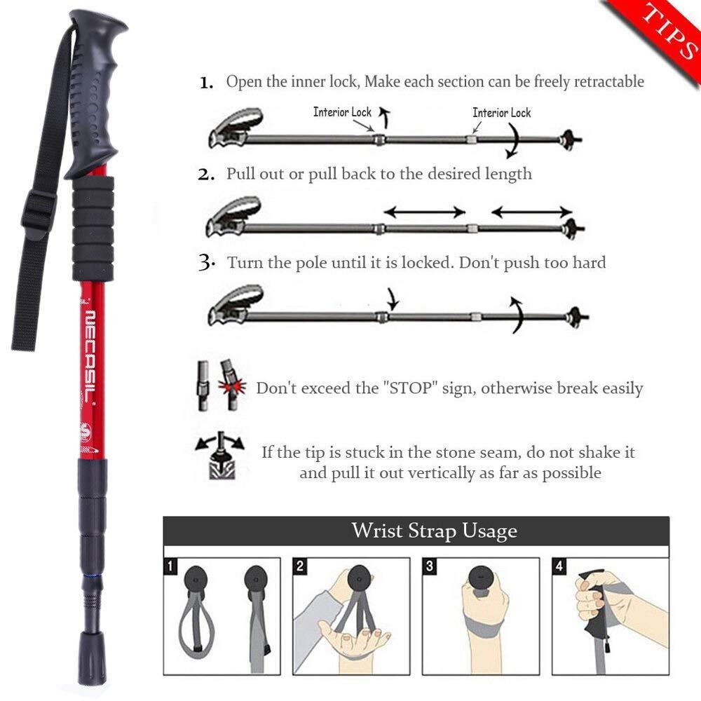 Amazon.com: bastón de senderismo – 2 piezas / lote bastones ...