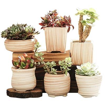 winemana 6 in Set 3 Inch Ceramic Succulent Plant Pot, Wooden Pattern Succulent Planter Container Bonsai Cactus Pots : Garden & Outdoor