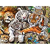 Weiliru DIY 5D Diamond Painting,Sunset Rises Full Drill 5 Pcs Embroidery Paintings Pasted