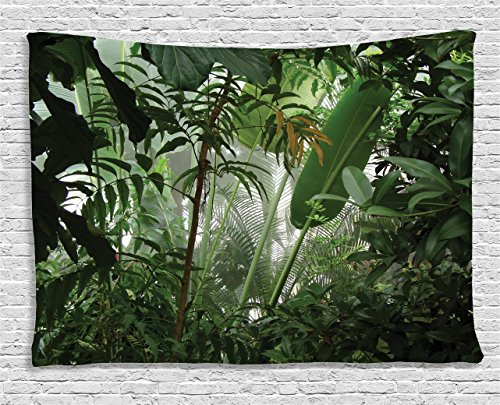 Ambesonne Rainforest Decorations Tapestry, Tropical Rainforest Preservation Humidity Palm Tree Wild Environment Misty Nature, Wall Hanging for Bedroom Living Room Dorm, 60 W X 40 L Inches Green