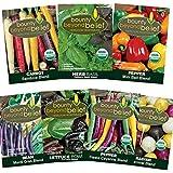 Festive Certified Organic Heirloom Vegetable Garden Seed Kit - Bonus 7 eBook Gardening Series - Pepper, Carrot, Basil, Bean, Lettuce, Radish - No GMO, Non GE, No Fillers, Open Pollinated