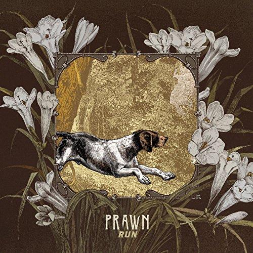 Prawn - Run - CD - FLAC - 2017 - FAiNT Download