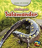 Life Story of a Salamander (Animal Life Stories)