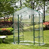 Glitzhome Garden Backyard 3 Shelf Mini Walk-In Greenhouse Review
