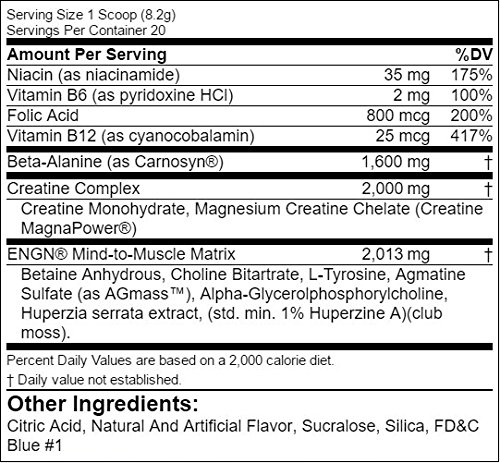 Evlution Nutrition EVL ENGN Pre-workout Powder, Pikatropin-Free, Caffeine Free Blue Raz, 20 Servings
