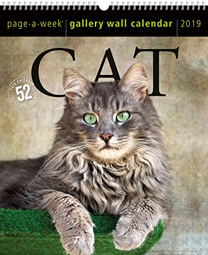 Cat Page-A-Week Gallery Wall Calendar 2019