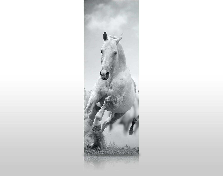 wandmotiv24 Duschr/ückwand Pferde Laufen in Wei/ß und Schwarz 70 x 200cm B x H - Aluminium 3mm Duschwand Design Keine Fugen M0945