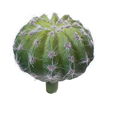 Darice Cactus Ball Green, 3 Inches : Garden & Outdoor