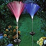Zehui Garden Christmas Decorative Lights Solar Eenergy Colorful Garden Lawn Fiber Lamp